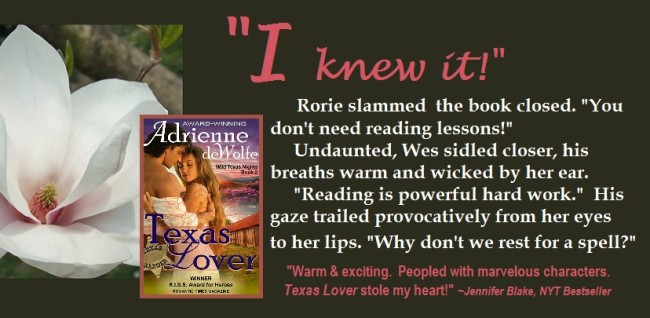 Western, historical romance, Texas fiction, blog tour, book excerpt, book marketing