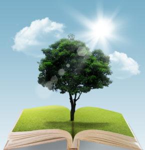 tree on book